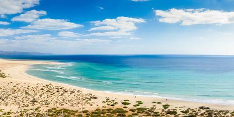 Fuerteventura   Costa Calma